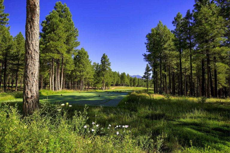 Forest Highlands Golf Course